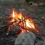 自然の中の渓流林間サイト 道志の森キャンプ場(山梨県道志村)