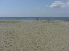 秋の海岸散歩-幕張海浜公園と幕張の浜(関東千葉県幕張)