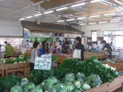 新鮮野菜-日高中央直売所「マロンの里」(関東埼玉県日高市)
