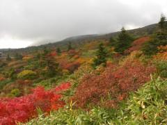蔵王エコーライン 紅葉スポット・紅葉ドライブルート(東北山形県、宮城県)
