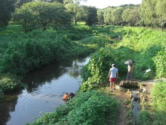バーベキュー広場と夏の緑が美しい-都立野川公園(関東東京都小金井)