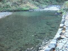 川遊び・水遊び-落合キャンプ場(関東東京都あきるの市・奥多摩)