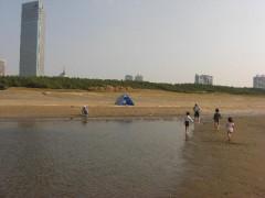 秋の潮干狩り・海遊び-幕張海浜公園と幕張の浜(関東千葉県幕張)