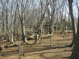 フィールドアスレチックが充実-ふなばしアンデルセン公園(関東千葉県船橋)