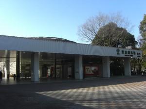 日本中央競馬会(JRA)東京競馬場の紹介