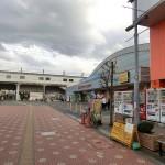 雨でも夏でも冬でもアイススケート 東大和スケートセンター(関東,東京,東大和市)