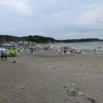 三浦半島 和田海水浴場での磯遊びとシュノーケリング(神奈川県三浦半島)