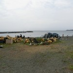 三浦半島 三戸海水浴場 海水浴&バーベキュー(神奈川県三浦半島)