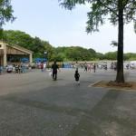 レイクサイドレストランのカレー、焼き鳥丼、お子様セット 国営昭和記念公園(東京都立川)