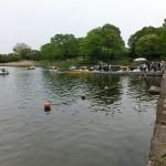 貸しボート遊び 国営昭和記念公園(東京都立川)