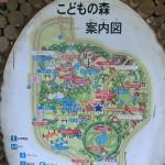 滑り台で遊びたいなら 新アトラクション『森のとりで』  国営昭和記念公園(東京都立川)