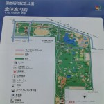 爽快!国営立川昭和記念公園レンタサイクルでサイクリングコースを走ってみた。(関東東京立川)