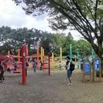 ボヨヨーン巨大なハンモックに子供は大はしゃぎ「虹のハンモック」国営立川昭和記念公園